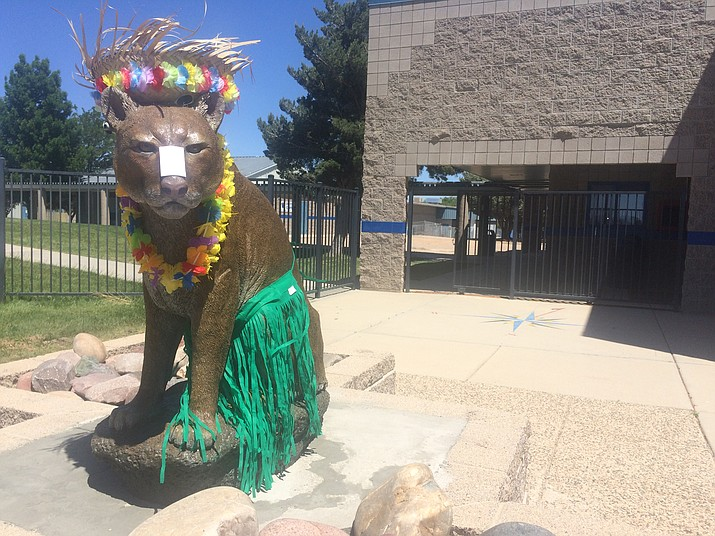 Wes the Cougar dressed up as the Chino Valley High School Class of 2018 senior prank. Graduation is at 7 p.m. Wednesday, May 23, at the Prescott Valley Event Center, 3201 N. Main St. (Jason Wheeler/Review)