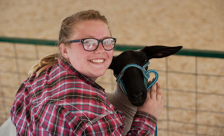 Jo Dickinson prepared to show off her lamb during the 2016 4-H/FFA Expo, hosted at the Yavapai County Fair in Prescott. The 2019 Expo and Auction is at the Prescott Frontier Days Rodeo Grounds April 24-27. (Yavapai County Fair/Courtesy)