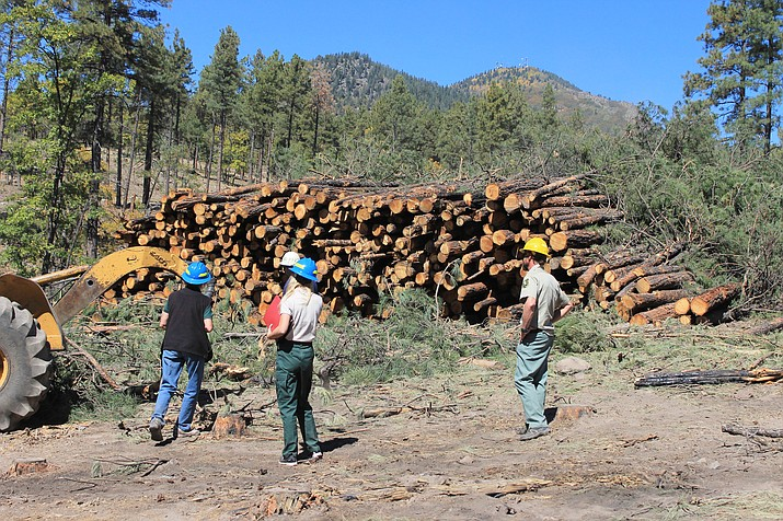Kaibab National Forest employees observe the status of forest restoration efforts on the slopes of Bill Williams Mountain in October 2017.