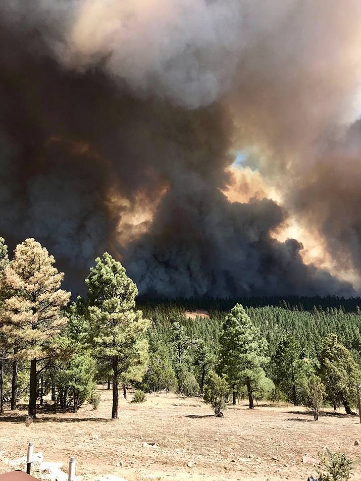 The Tinder Fire near Payson burned  about 19 square miles in early May. (Courtesy Arizona Public Service)
