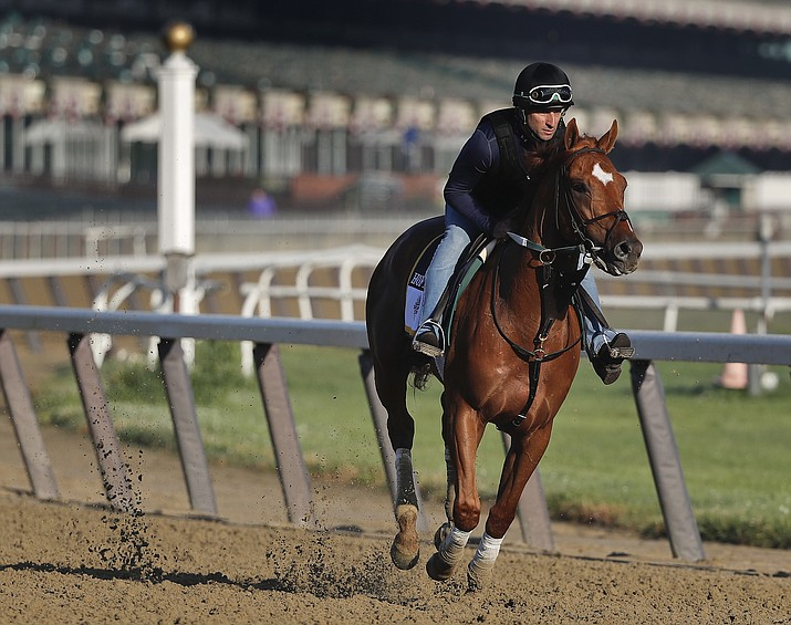 Belmont Stakes hopeful Hofburg works out at Belmont Park, Tuesday, June 5, 2018, in Elmont, N.Y. Hofburg is one of 10 horses racing in the 150th running of the Belmont Stakes horse race on Saturday. (AP Photo/Julie Jacobson)