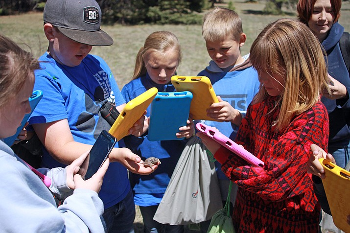 Students from Fredonia Elementary School attend a field trip on the North Kaibab Ranger District May 17 to help the forest's Citizen Science Project. The students were armed with Kindle Fire tablets to photograph and document a variety of plants and animals on the iNaturalist app. (Photo/Kaibab National Forest)