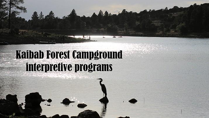 Kaibab Forest Campground interpretive programs: August 3-4