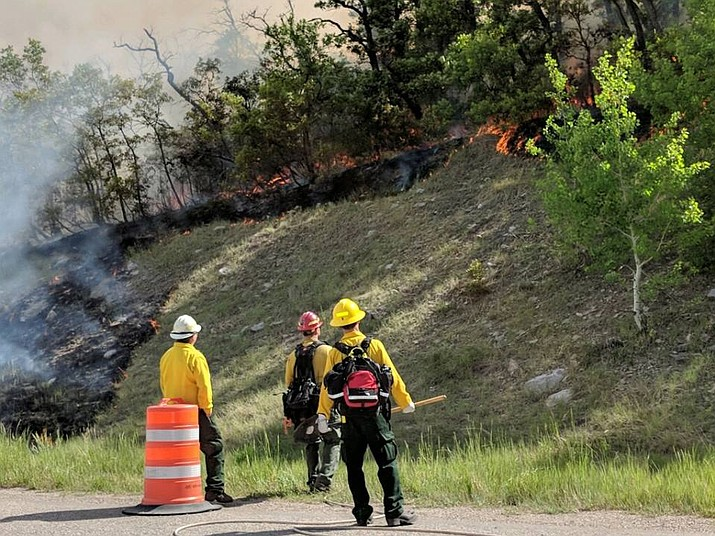 Wildland firefighters on scene at the fire in Southwest Colorado near Durango. Authorities ordered the evacuation of more than 1,000 homes along Hihgway 550. (Photo courtesy La Plata County Government)
