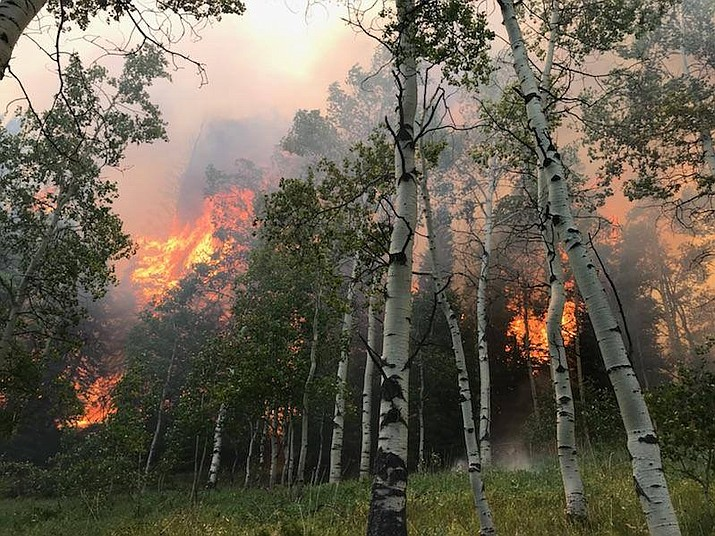 The Willow Creek Fire, located north of Highway 40 and Strawberry reservoir on the Heber-Kamas Ranger District has burned 650 acres and is 10 percent contained as of Tuesday. (Photo courtesy Utah Fire Info)