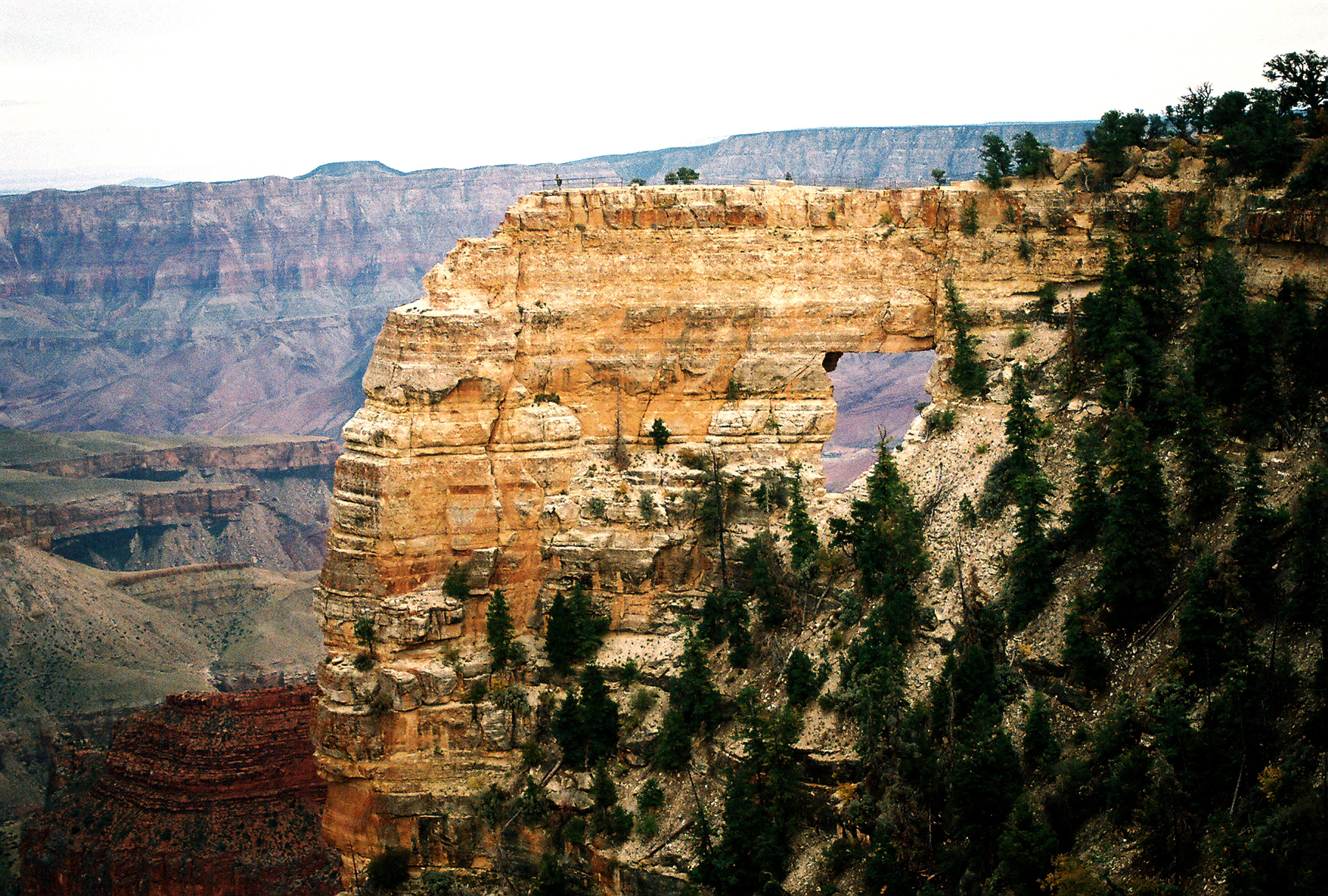Grand Canyon To Implement Level 2 Water Restrictions On