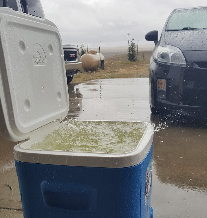 Think we didn't get much rain this weekend? How about this image of roof rain in Chino Valley – from 11:45 a.m. to 1 p.m. Saturday, June 16. (Ursula J./Courtesy)