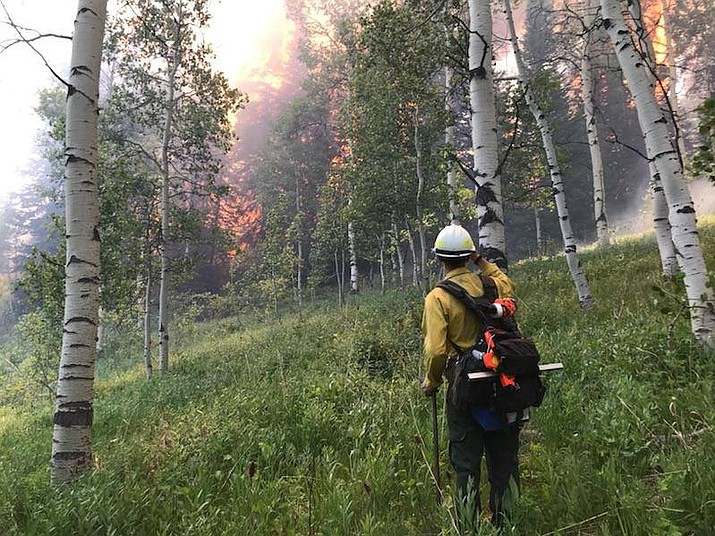 The National Interagency Fire Center in Boise, Idaho, reported there were 1,746 people responding to fight six active wildfires in the region. (Photo courtesy Utah Fire Info)