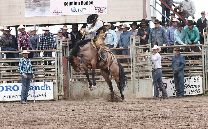 Timber Holmquist bursts out of the bucking shoots during the saddle bronc riding at the 40th annual Cowpunchers Reunion Rodeo June 15-17. (Loretta Yerian/WGCN)