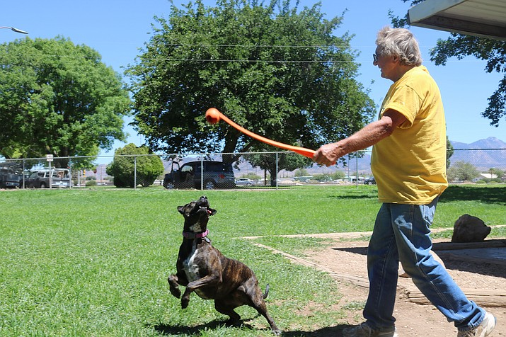 Keith Klamrowski and his dog, Brownie, enjoy a Wednesday afternoon at Lewis Kingman Park. Currently Kingman's only dog park, City staff recently completed a third area for dogs. (Travis Rains)