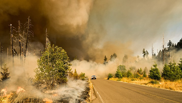 Ask the Contractor: Protect against wildfire, be Firewise