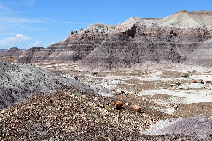 Blue Mesa in Petrified Forest National Park. (Photo/NPS)