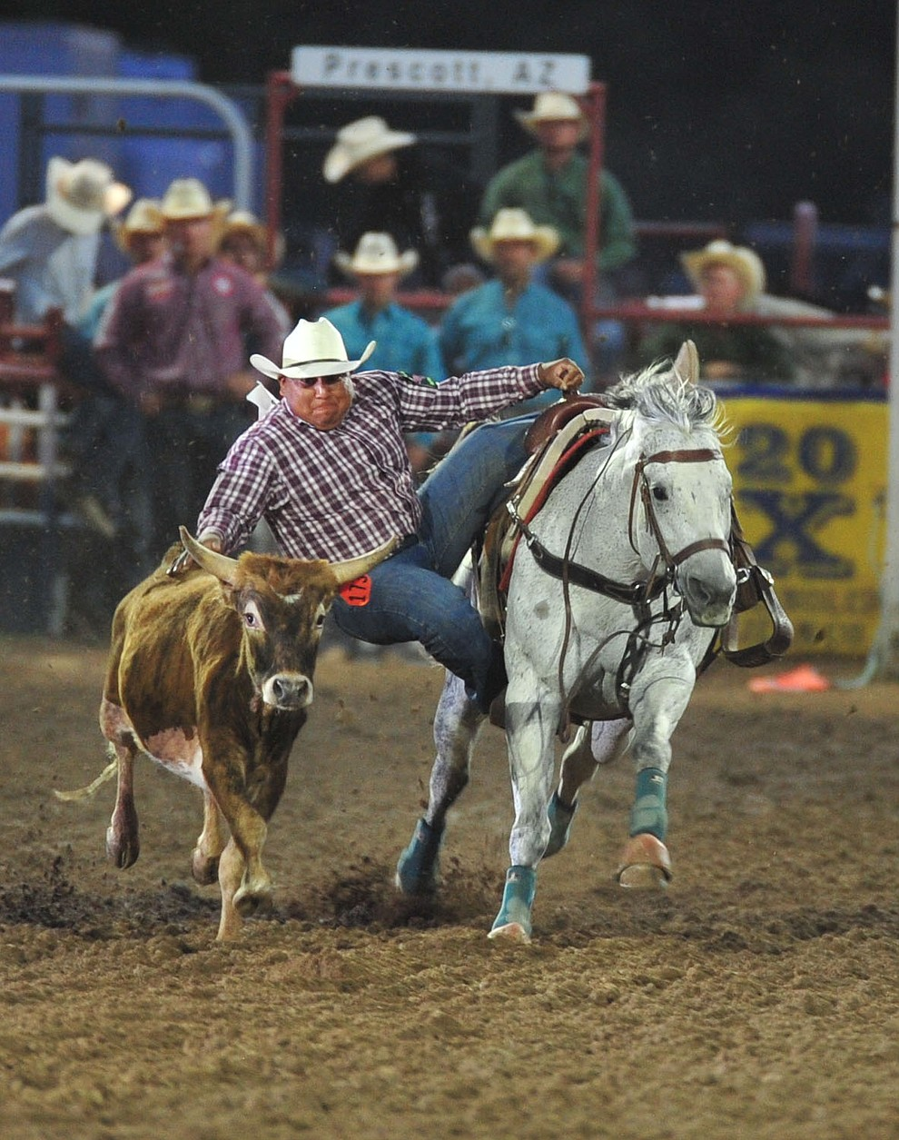 Michael Bates drops in for a 9.8 second run in the steer wrestling during the second performance of the Prescott Frontier Days Rodeo Friday, June 29, 2018.(Les Stukenberg/Courier)