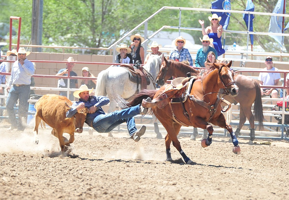 Olin Hannum has a 4.5 second run in the steer wrestling during third performance of the Prescott Frontier Days Rodeo Saturday, June 30, 2018.(Les Stukenberg/Courier)