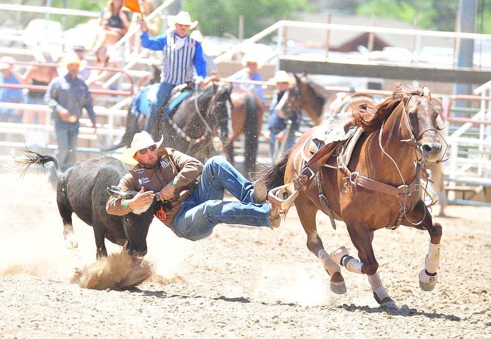 Jace Melvin has a 8.9 second run in the steer wrestling during the third performance of the Prescott Frontier Days Rodeo Saturday, June 30, 2018.(Les Stukenberg/Courier)