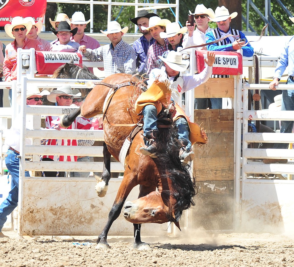 Clayton Biglow scores 79 on Whisky Trip in the bareback during the third performance of the Prescott Frontier Days Rodeo Saturday, June 30, 2018.(Les Stukenberg/Courier)