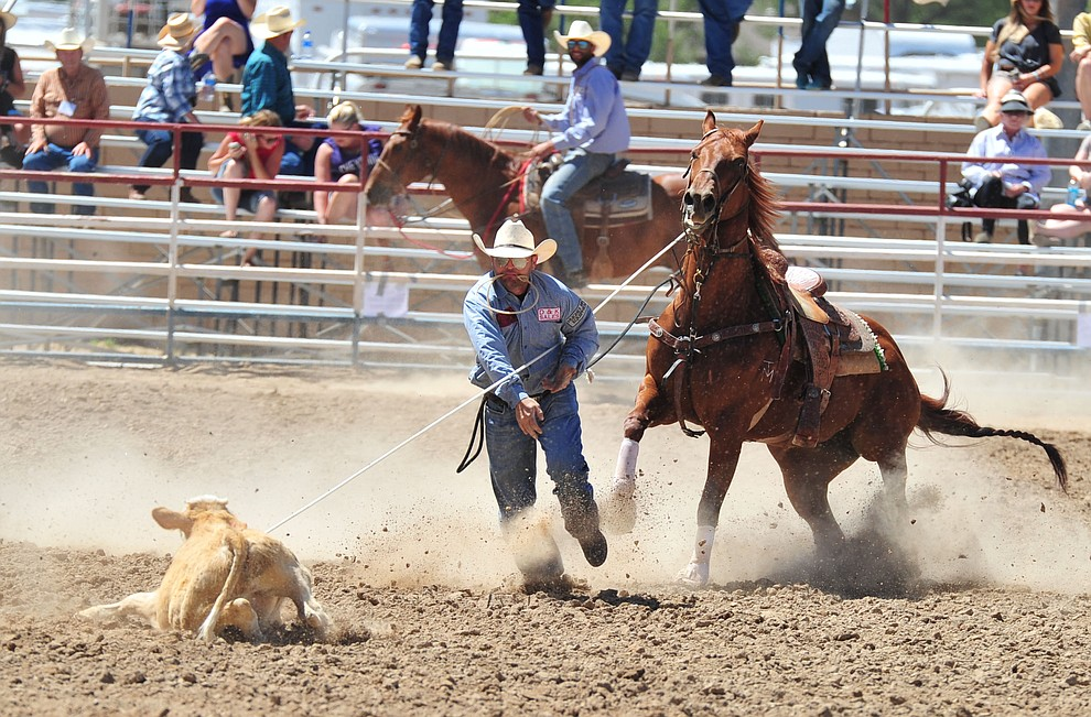 JD Kibbe gets an 11.4 second run in the tie down roping during third performance of the Prescott Frontier Days Rodeo Saturday, June 30, 2018.(Les Stukenberg/Courier)
