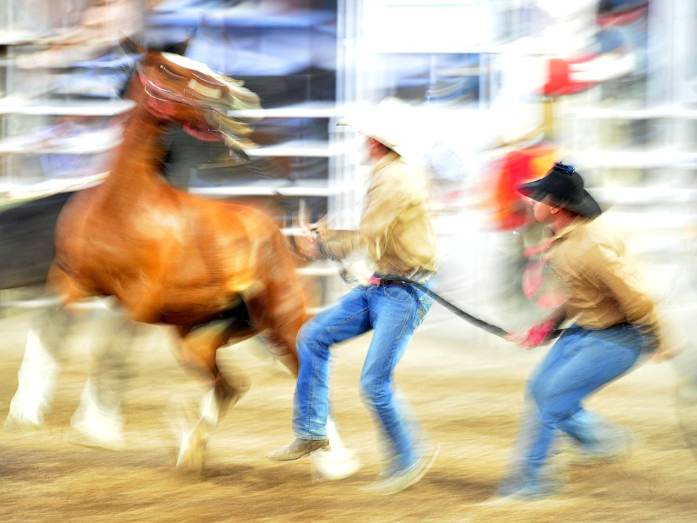 Wild horse racing was fast and furious during the 5th performance of the Prescott Frontier Days Rodeo Sunday, July 1, 2018. (Les Stukenberg/Courier)