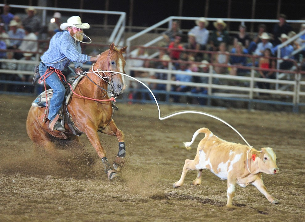 Roy Branco has a 21.2 in the tie down roping during the 5th performance of the Prescott Frontier Days Rodeo Sunday, July 1, 2018. (Les Stukenberg/Courier)