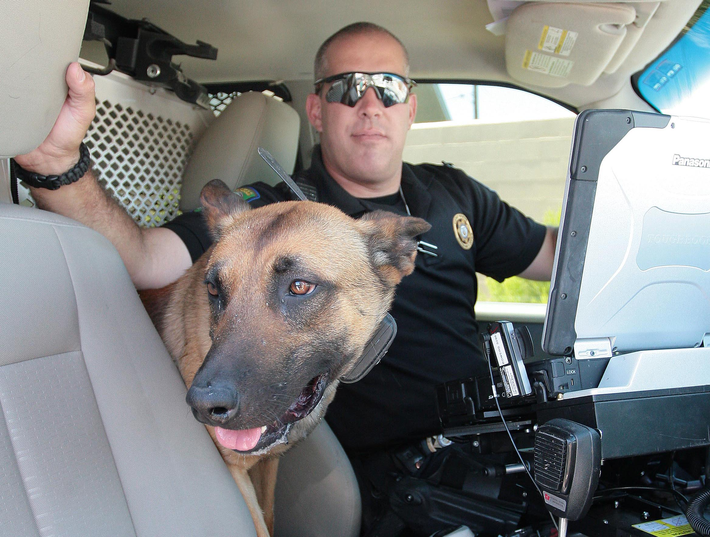 K-9 deputy certified by National Police Canine Association - Verde Independent 1