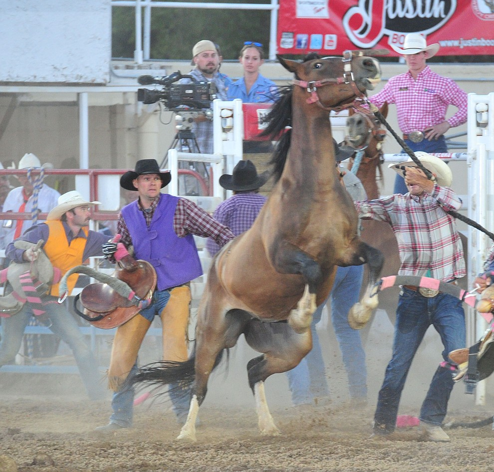 Wild horse race action during the 6th performance of the Prescott Frontier Days Rodeo Monday, July 2, 2018. (Les Stukenberg/Courier)
