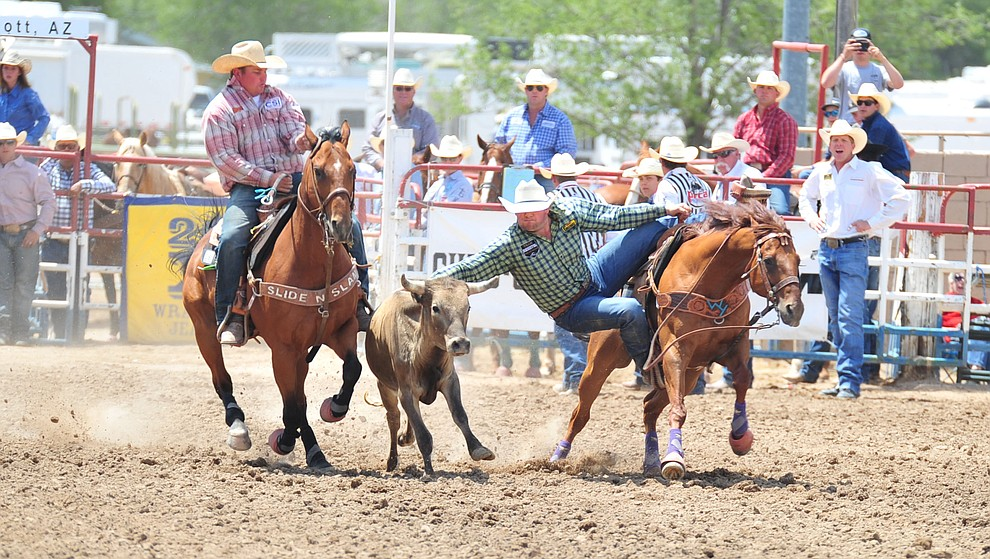 Mike McGinn in the steer wrestling during the final performance of the 2018 Prescott Frontier Days Rodeo Wednesday, July 4, 2018. (Les Stukenberg/Courier)