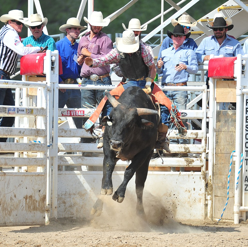 Morgan Julian in the bull riding during the final performance of the 2018 Prescott Frontier Days Rodeo Wednesday, July 4, 2018. (Les Stukenberg/Courier)