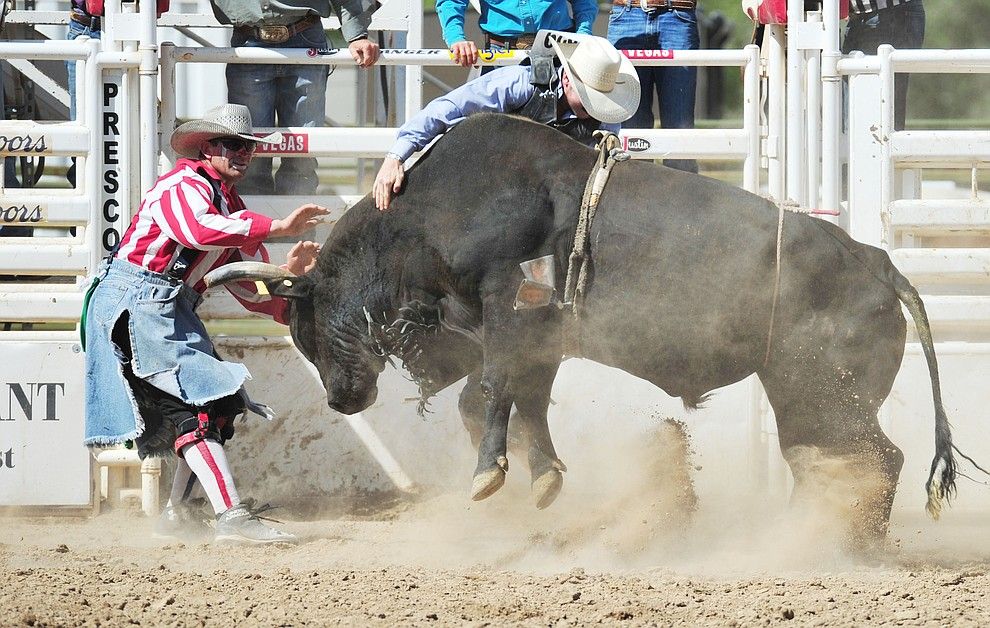 Bullfighter Quirt Hunt makes a save in the bull riding during the final performance of the 2018 Prescott Frontier Days Rodeo Wednesday, July 4, 2018. (Les Stukenberg/Courier)