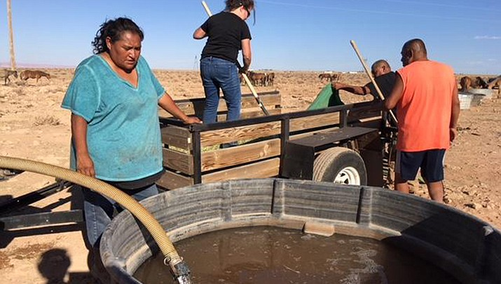 Grassroots group works to save wild horses on parched Navajo Reservation