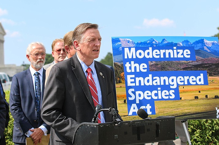 Rep. Paul Gosar, R-Prescott, is chairman of the Congressional Western Caucus, whose members Thursday unveiled a package of bills aimed to modernize the Endangered Species Act that critics said would gut the legislation instead.