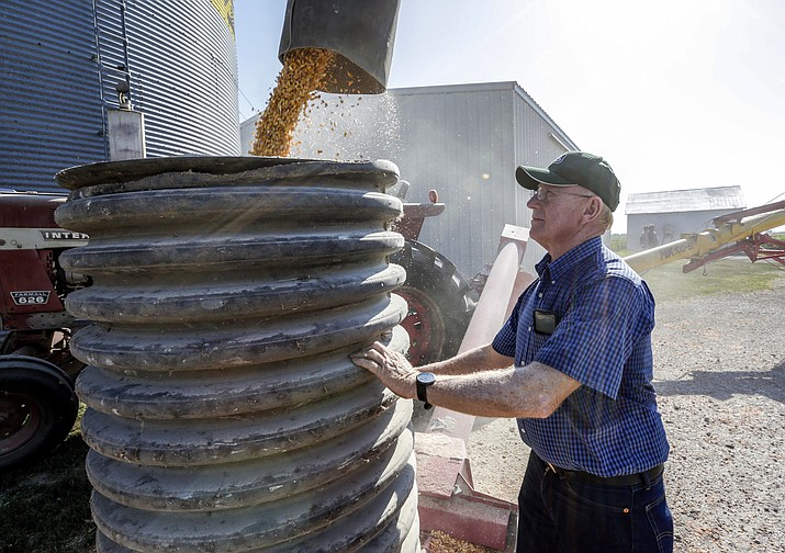 In this July 12, 2018 photo, farmer Don Bloss checks on the operation of an auger transferring corn on his farm in Pawnee City, Neb. Farmers and agricultural economists are worried that president Donald Trump's trade, immigration and biofuels policies will cost farms billions of dollars in lost income and force some out of business. Bloss, who grows corn, soybeans, sorghum and wheat on his farm in the southeastern Nebraska community of Pawnee City, said he's already seen a few neighbors quit farming as they struggled to make a profit even before the tariff battle began this year. (AP Photo/Nati Harnik)