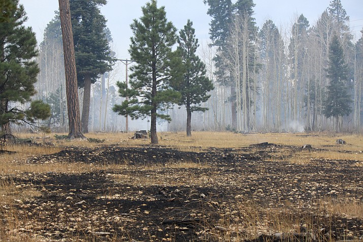 Hazardous fuels reduction treatments takes place on the North Kaibab Ranger District in 2017. Prescribed burns are now being implemented on areas of the Williams and Tusayan Ranger Districts of the Kaibab National Forest. (David Hercher/U.S. Forest Service, KNF)