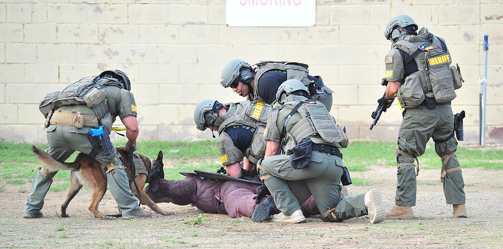 Maricopa County Sheriff's Office SWAT team members work with a K-9 team as police K-9 handlers and their partners from throughout Arizona who are attending the 26th annual Canine Survival Seminar at Yavapai College hold a public demonstration at the Prescott Rodeo Grounds Tuesday, July 17, 2018.(Les Stukenberg/Courier)