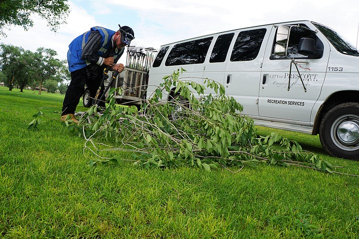 Daniel Birchum, one of the workers in the Coalition for Compassion and Justice (CCJ)/City of Prescott homeless work program cuts a tree limb into smaller pieces before disposing of it. Birchum was among the crew members picking up debris at the Antelope Hills Golf Course after a monsoon storm this past week. (Cindy Barks/Courier)