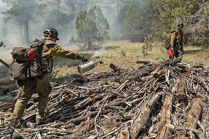 Prescott National Forest firefighters assist the Stubbs Fire by burning a pile of dead wood on Prescott National Forest land across the road from the Yolo Ranch Sunday, July 22.