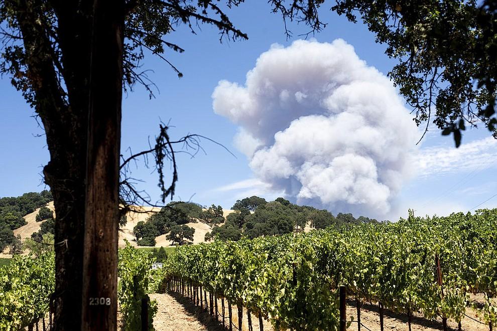 Smoke billows behind a vineyard in Hopland, Calif., as the River Fire burns on Monday, July 30, 2018.  (AP Photo/Noah Berger)