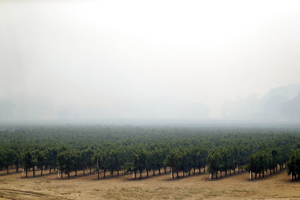 Smoke from a wildfire covers the landscape over a vineyard Monday, July 30, 2018, in Lakeport, Calif. A pair of wildfires that prompted evacuation orders for thousands of people are barreling toward small lake towns in Northern California. (AP Photo/Marcio Jose Sanchez)
