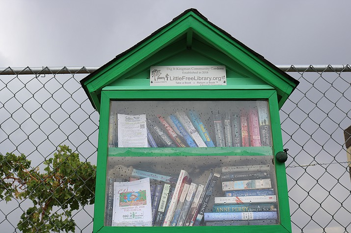 The community gardens now has an adult and a children's library at 2301 Lillie Ave. (Photo by Travis Rains/Daily Miner)