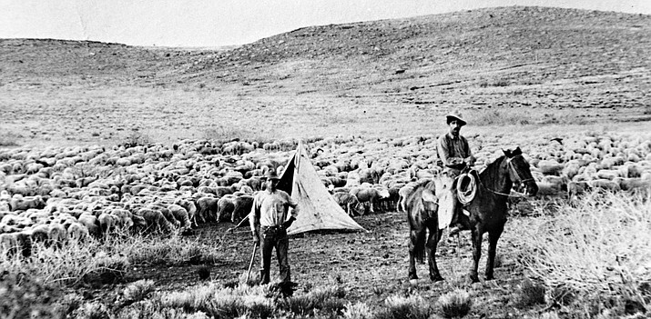 Michel O'Haco tending his flock north of Phoenix in 1912. His grandchildren still operate the O'Haco Cattle Company. (Courtesy of Kim O'Haco McReynolds)
