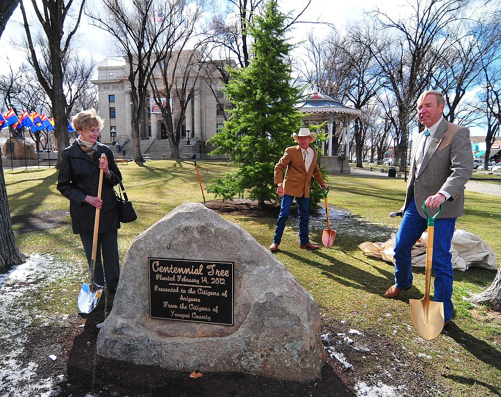 Yavapai County Supervisors Carol Springer, Chip Davis and Tom Thurman unveil the plaque commemorating the planting of the Centennial Tree, a Diadora Cedar, on the Yavapai County Courthouse Tuesday, February 14, 2012 in Prescott. (Les Stukenberg/Courier)