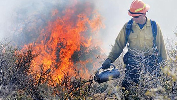 Area fire managers have planned to burn piles at various locations in the Prescott Basin, pending favorable weather conditions. (Courier, file)