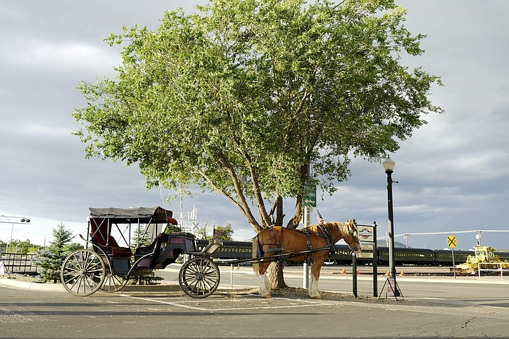 Grand Canyon Carriage Works was asked to move from downtown Williams for parking in a red zone. The company is now operating from the Williams Visitor Center parking area. (Loretta Yerian/WGCN)