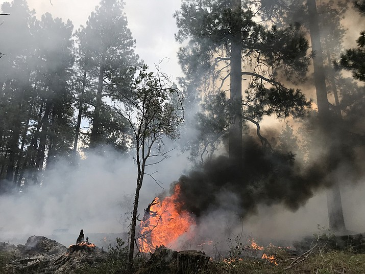This Aug. 11 photo shows the Stina Fire on the North Rim, which burned at varying levels of intensity resulting in a mosaic pattern on the landscape. (Kaibab National Forest)