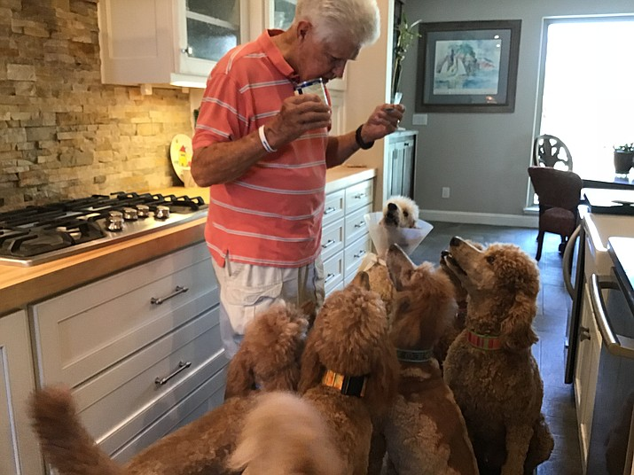 Mealtime is always special for our dogs. (Christy Powers/Courtesy)