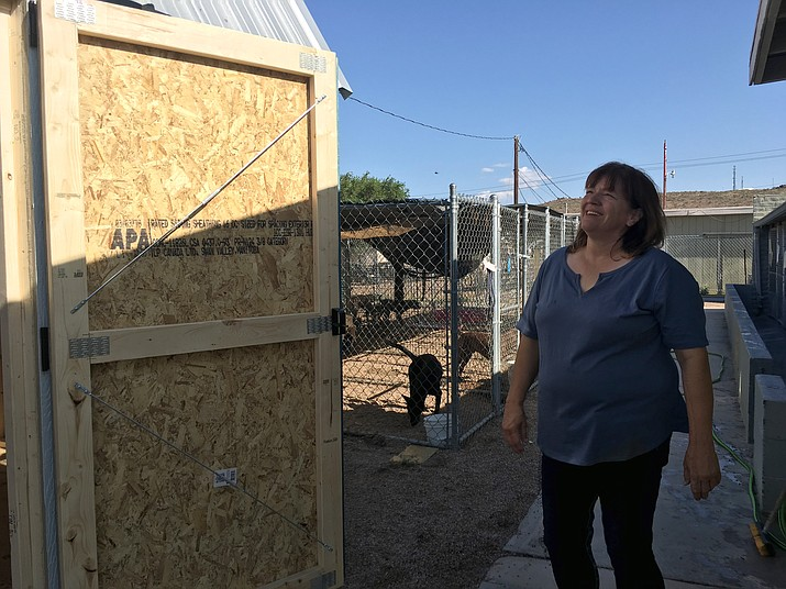 Lisa Snyder, manager at the Western Arizona Humane Society is excited for the new shed for the cats at the shelter and has plans to add in an AC unit and a play area. (Photo by Vanessa Espinoza/Daily Miner)
