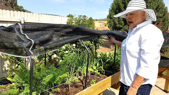 Vicki Beckner's Square Foot Gardening in a VegTrug 8-18 (Medium).