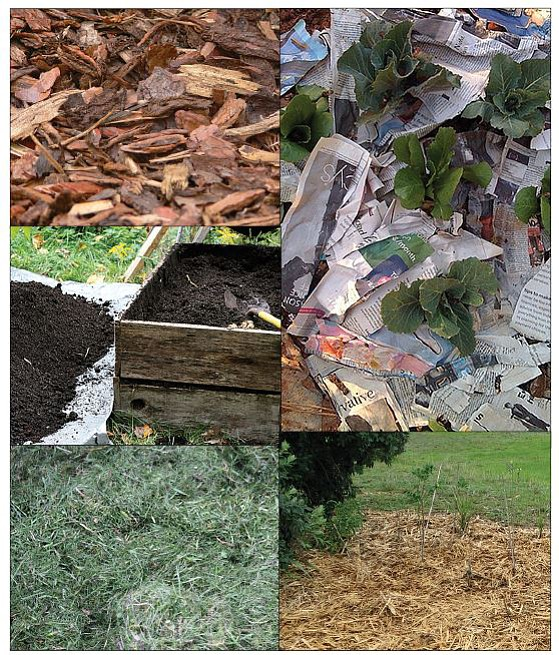 Among the choices in mulch for gardens are, clockwise from top left, bark, shredded newspaper, straw, grass clippings and compost. (Courtesy photos)