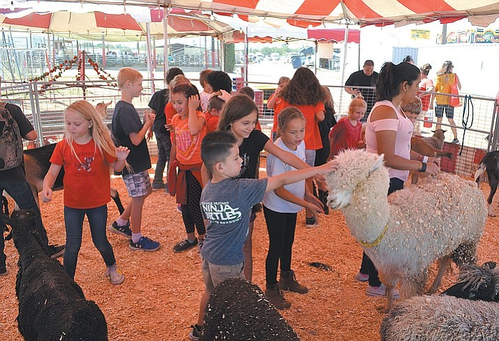 A petting zoo is just one of the many attractions at this year's Mohave County Fair. There will also be pony rides, music, and performers wandering throughout the four-day event. (Daily Miner file photo)