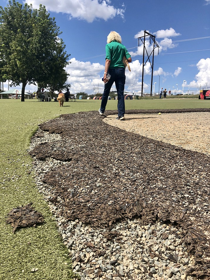 "Four years after completion of Prescott's ""Dream Dog Park,"" the rubberized mulch that borders the artificial turf at the Willow Creek Road park is showing wear. Supporters of the park hope that sponsors will help with some of the needed repairs and maintenance. (Cindy Barks/Courier)"