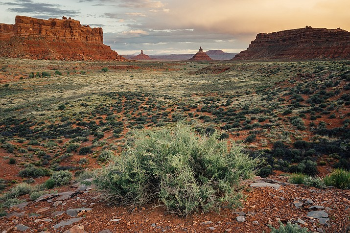 Valley of the Gods in Bears Ears National Monument in Utah. Two spots on a 15-person advisory committee are reserved for tribal representatives. (Stock photo)